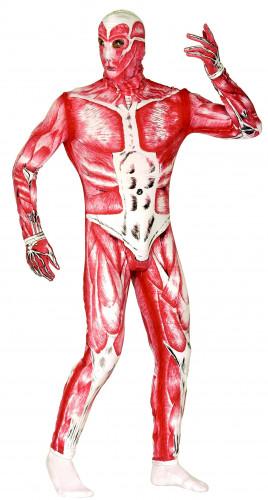 Déguisement de corps humain homme