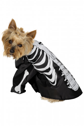 Déguisement squelette chien Halloween