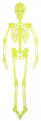 Squelette Articulé de Décoration Halloween