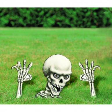 Décorations squelette