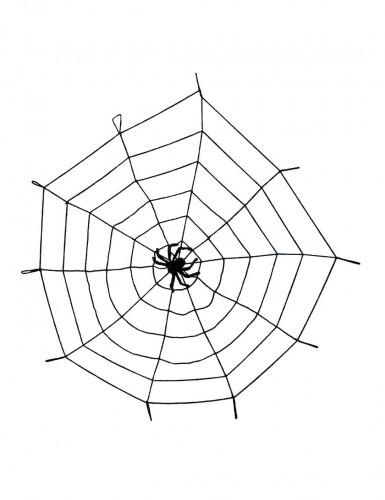 Toile d'araignée élastique avec araignée
