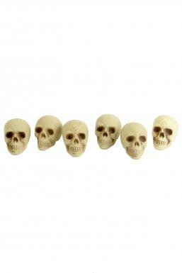 Têtes de mort Halloween