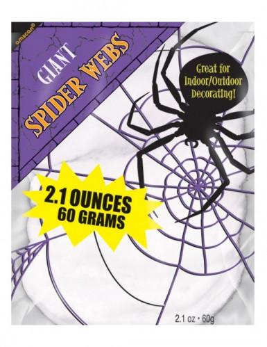 Décoration moyenne toile d'araignée Halloween
