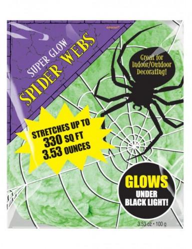 Décoration toile d'araignée verte Halloween