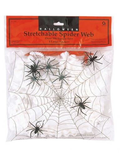 Décoration petite toile d'araignée Halloween